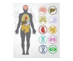https://healthscamsideeffects.com/